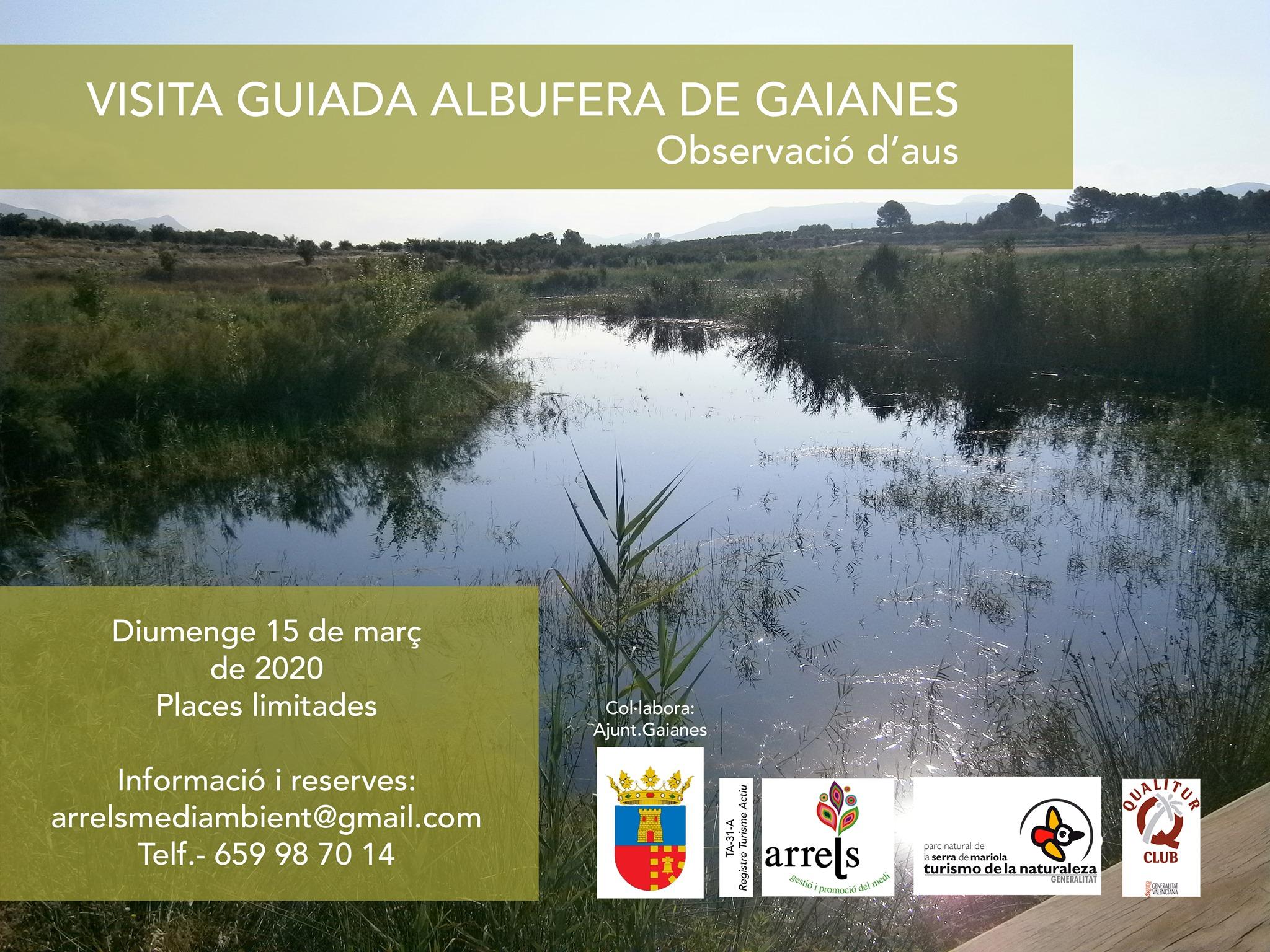 Visita guiada a la albufera de Gaianes