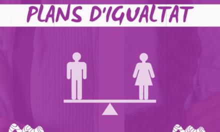 Assessorament a empreses per a l'elaboració de Plans d'Igualtat